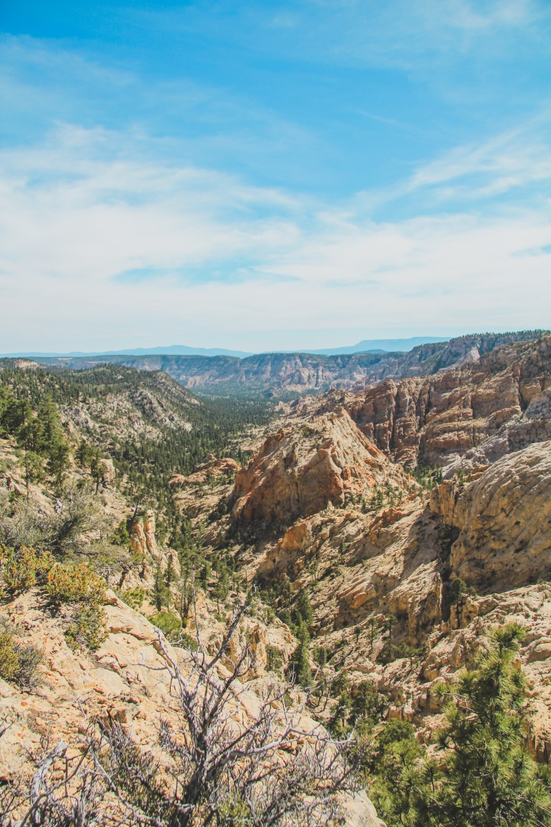 Boulder To Escalante On Hells Backbone: A (Surprising) Scenic Drive